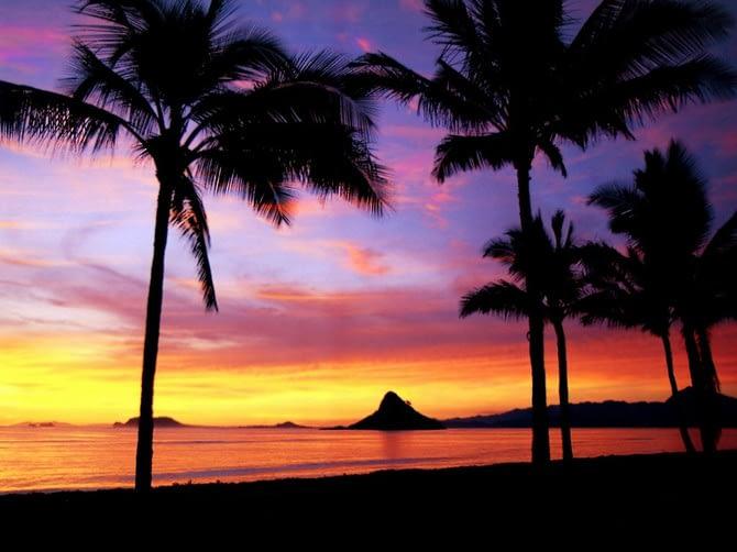 Medjunarodne selidbe Havaji